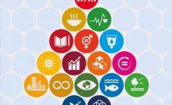 """Agenda 2030: Commissione pubblica nuovo documento. Rey: """"uno stimolo per rafforzare nostro impegno per SDG"""""""