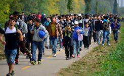 Patto UE su migrazione e asilo, CCRE/CEMR: enti locali e regionali abbiano ruolo chiave