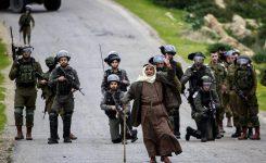 Appello UCLG: stop violenze in Palestina e Israele!