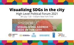 Da Venezia a New York:  SDGs strumenti per visualizzare l'azione locale
