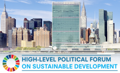 HLPF di New York: ecco i 7 punti presentati dall'AICCRE!