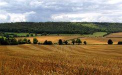 Zone rurali: ecco il piano della Commissione