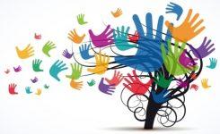 Europa rafforza misure per istruzione primaria e secondaria di alta qualità e inclusiva