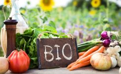 Lanciata giornata europea della produzione biologica