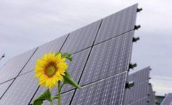Transizione verde: occorre cooperazione tra i livelli di governo